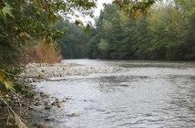 metier hydrobiologiste rivière