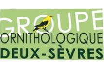GOR79 groupe ornithologique