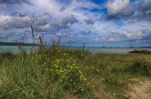 master habitats bassins versants Rennes