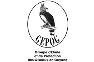 GEPOG, protection des oiseaux de Guyane