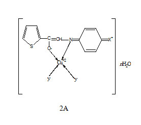 Antimicrobial relevance of Cu (II) complexes of thiophene