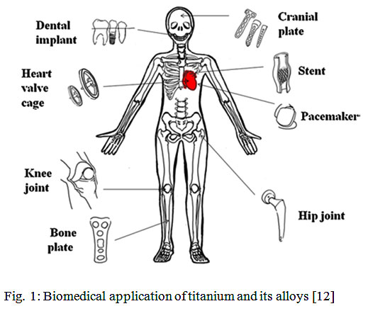 The Electrochemical Behavior of Titanium Improved by