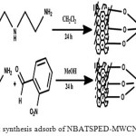 Adsorption of Thymol Blue and Erythrosine-B on MWCNTs