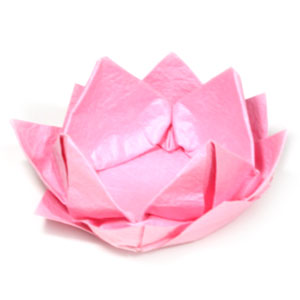 origami flower diagram in english 4 wire cdi chinese atv wiring how to make lotus flowers new