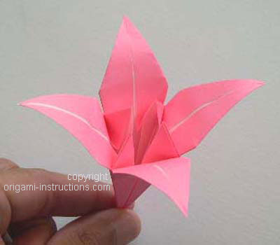 Origami Lily flower photo diagrams 20