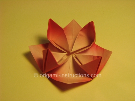 origami flower diagram in english 2003 harley davidson touring wiring lotus folding instructions how to make an 20