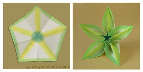 carambola flower origami diagram nuclear power plant labeled instructions video on how to make a kusudama with the