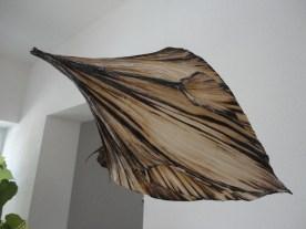 Vincent Floderer, Viereck Verlag exhibition