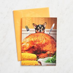 paper-source-dog-and-turkey-thanksgiving-card