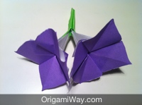 origami flower instruction diagram standard thermostat wiring instructions and hydrangea