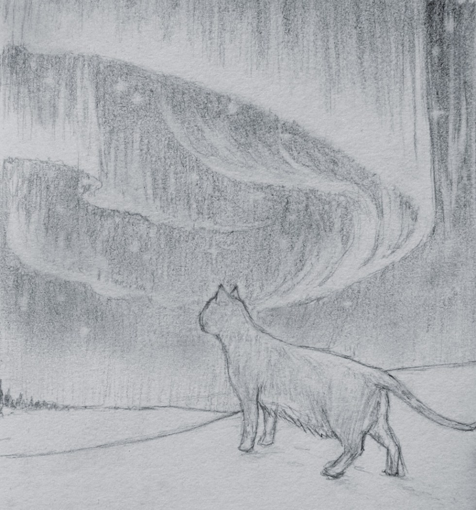 Sketch of a cat looking off into the distance of a snowy landscape with the aurora borealis in the sky above