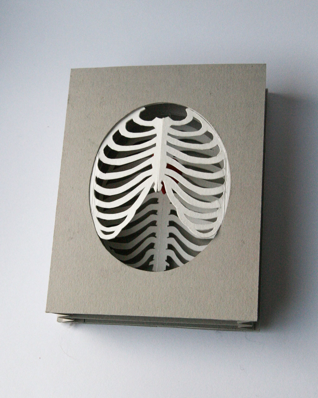 'Cardiothoracic' tunnel book/card: closed flat