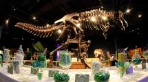 Orlando Science Center - Tickets Hotels Packages