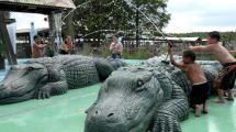 Gatorland Tickets - Orlando Destination Guide