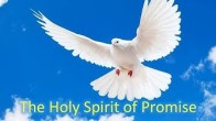 Holy Spirit of Promise