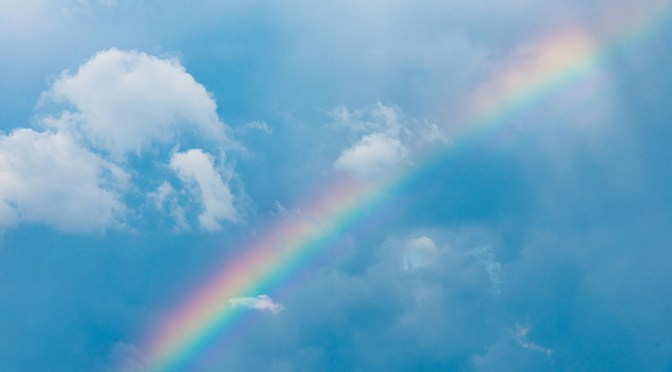 The Rainbow Covenant