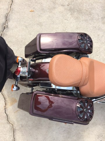 Custom molded saddle bags and Ostrich seat