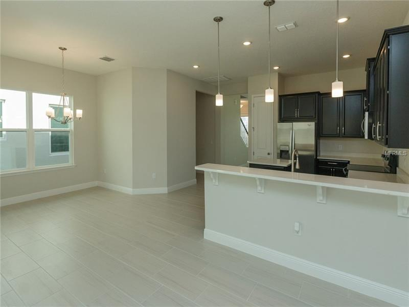 1787 WHITE FEATHER LOOP, OAKLAND, FL 34787 (18)