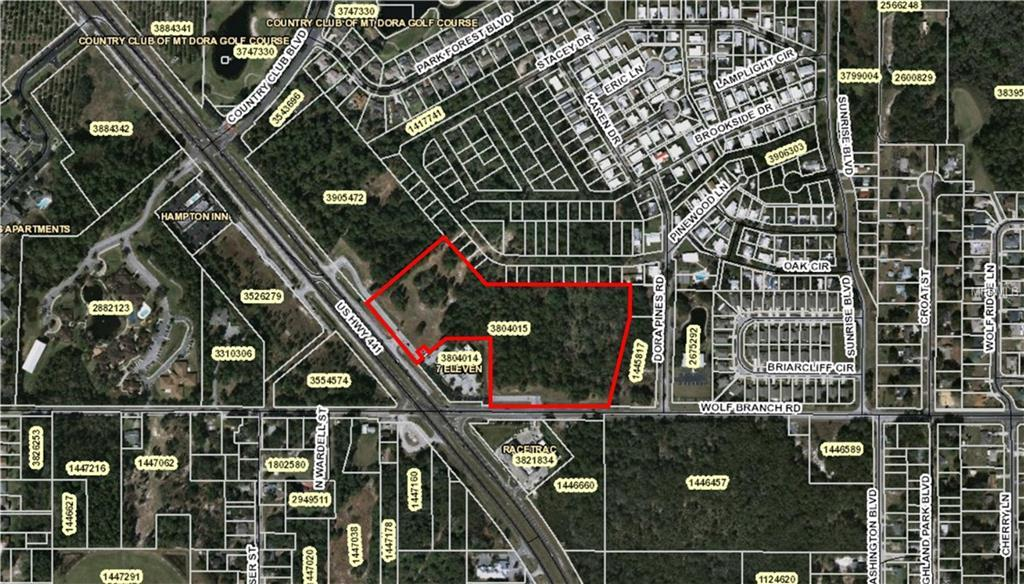 US HWY 441 & WOLF BRANCH ROAD,MOUNT DORA,Florida 32757,Land,US HWY 441 & WOLF BRANCH ROAD,G4841188