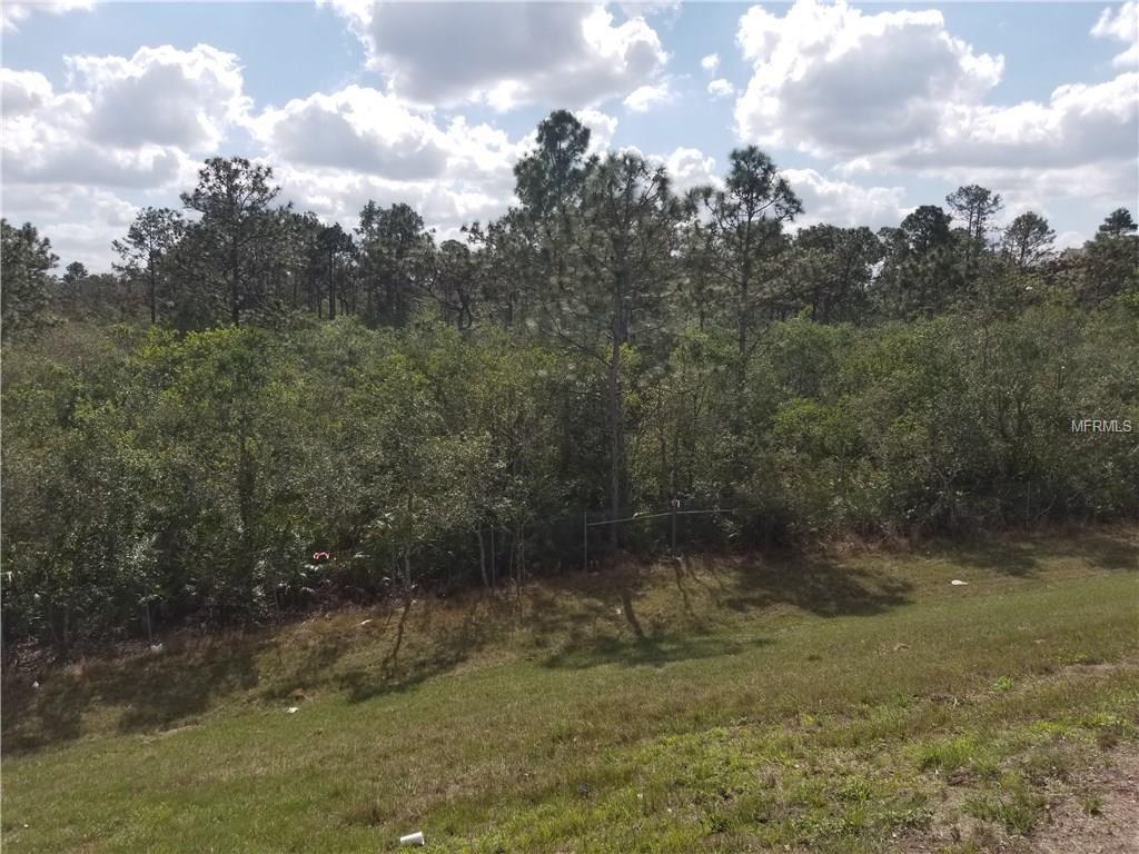 S APOPKA VINELAND,ORLANDO,Florida 32821,Land,APOPKA VINELAND,O5564502