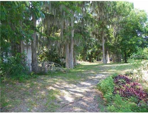 1515 US HIGHWAY 441,TAVARES,Florida 32778,Land,US HIGHWAY 441,G4672930
