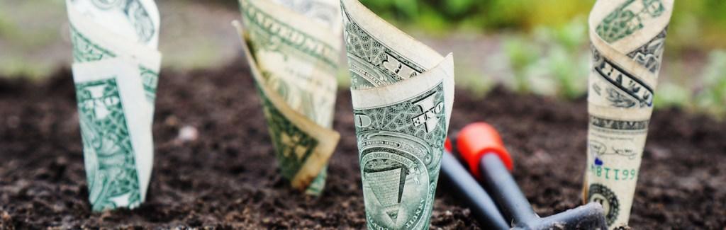 medo de empreender - nao encontrar financiamento