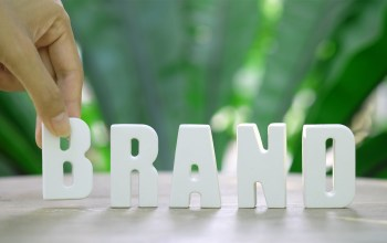 06-steps-to-create-brand-authority