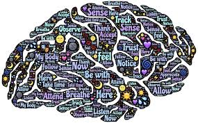labelled brain