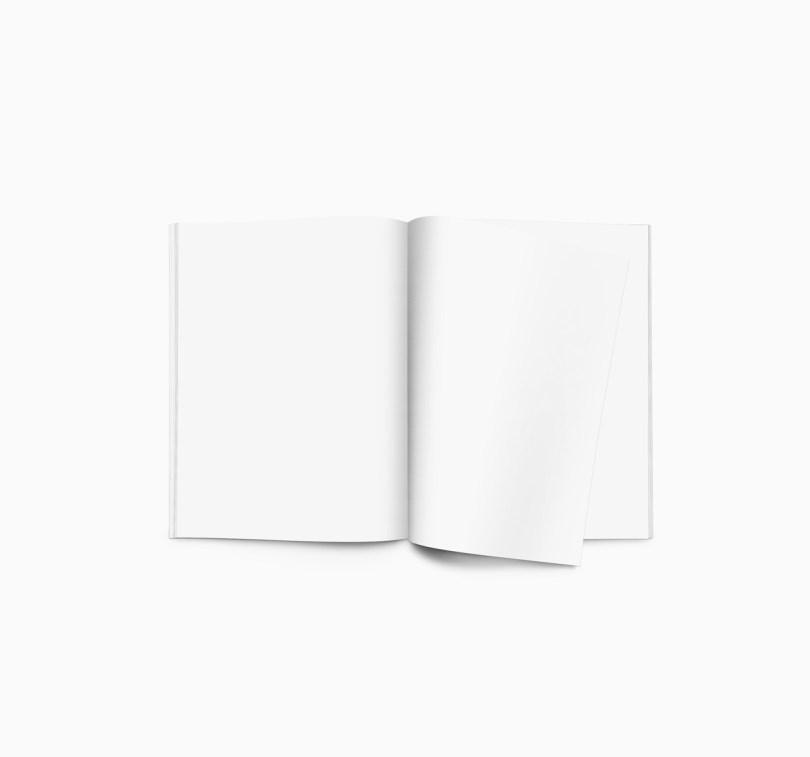portfolio 11