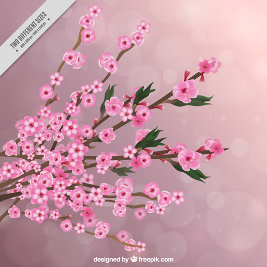 floral-vector13