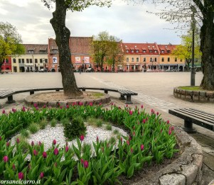 Piazza-Municipio-Kaunas