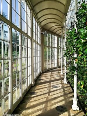 Wollaton Hall giardino botanico
