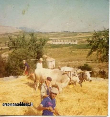 anno-1974-primo-piano-attilio-laurito-amedeo-taddio-cosimo-laurito-figlio-di-attilio-vincenzo-fortunato-papà-di-Franca