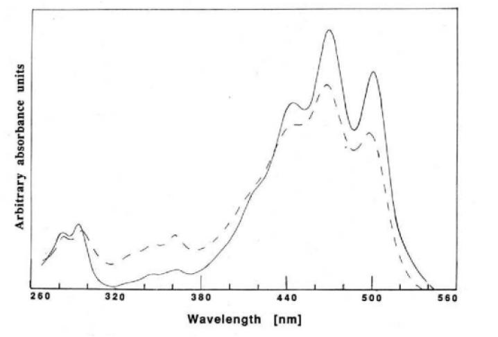 likopen molekülünün görünür bölge spektroskopisi