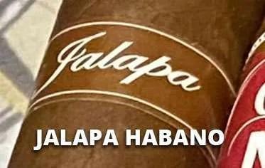 ortega jalapa habano