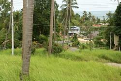 รูปถ่ายอาณาบริเวณเนื้อที่ของโบถ์คริสต์เตียนออร์โธด็อกซ์ อ.เกาะสมุย ที่จะก่อสร้างบนเนื้อที่นี้