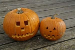 pumpkin-201117_640