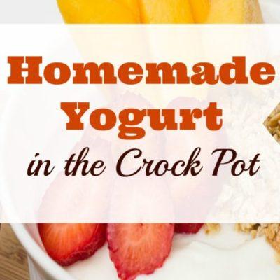 My Frugal DIY Experiments: Homemade Yogurt in the Crock Pot