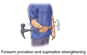 Forearm Pronation and supination strengthening
