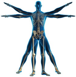 Cervical Radiculopathy: Does Spine Surgery Make a Difference?