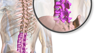 Photo of Global Lumbar Spine Fusion Market 2016-2020: Key Vendors are DePuy Synthes, Medtronic, NuVasive, Stryker & Zimmer Biomet – Research and Markets