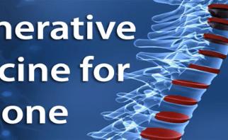Bone Biologics Completes $1.4 Million Round of Financing