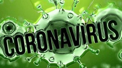 Photo of Scientists discover new coronavirus drug target from proteins that let virus hide from immune system