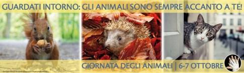 Manifesto della Giornata Nazionale degli Animali (orizzontale) – Fonte: ENPA