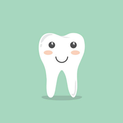 Image result for molar