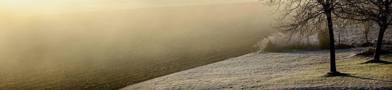 cropped-winter-598632_1920.jpg