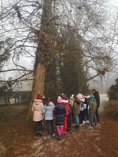 Arboretum2020__004