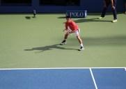 全米オープンテニスの楽しみ方 (2015年度版)