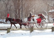雪が積もったセントラルパークをお散歩
