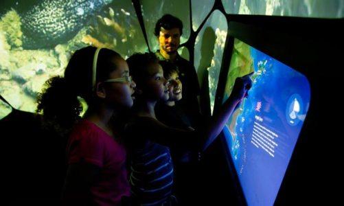 Projeto Coral Vivo abre Centro de Visitantes do Parque dos Corais de Búzios